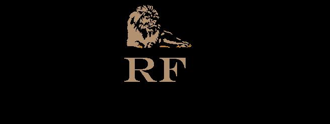 logo-developer